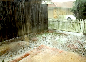 hail damage done to a house yard