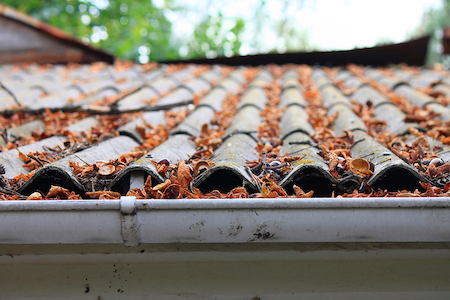dirty roof and gutters